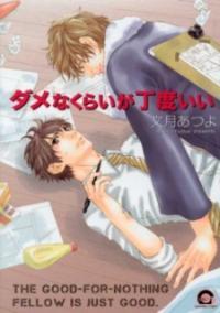 Dame na Kurai ga Choudoii manga