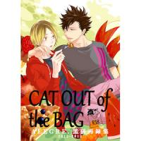 Haikyuu!! - CAT OUT of the BAG