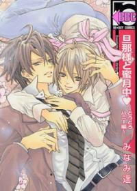 Dannasama To Mitsugetsuchuu manga